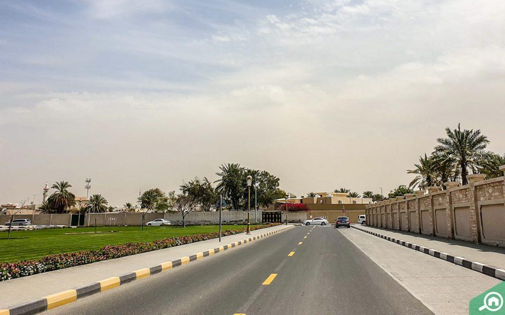 شارع من ضاحية حلوان