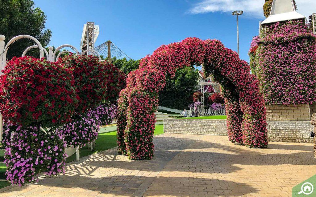 A view at Dubai Miracle Garden