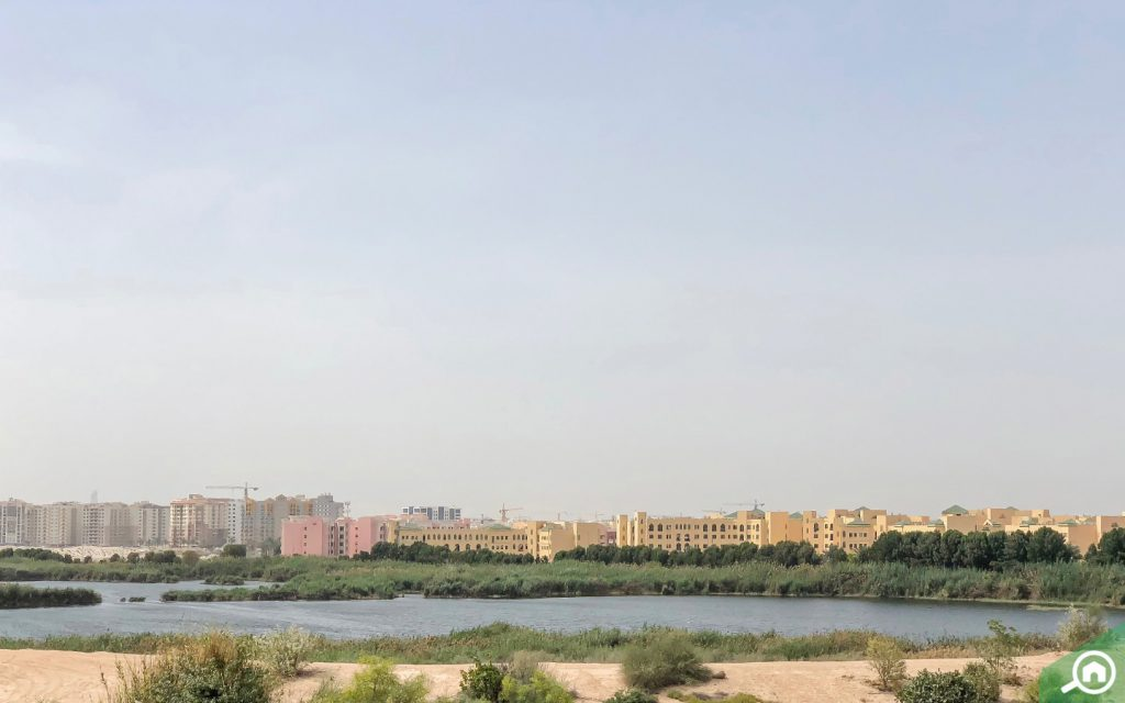 al warsan lake