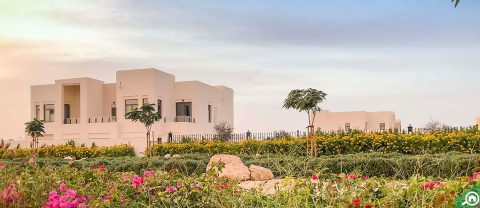Mira Oasis 3, Reem Dubai
