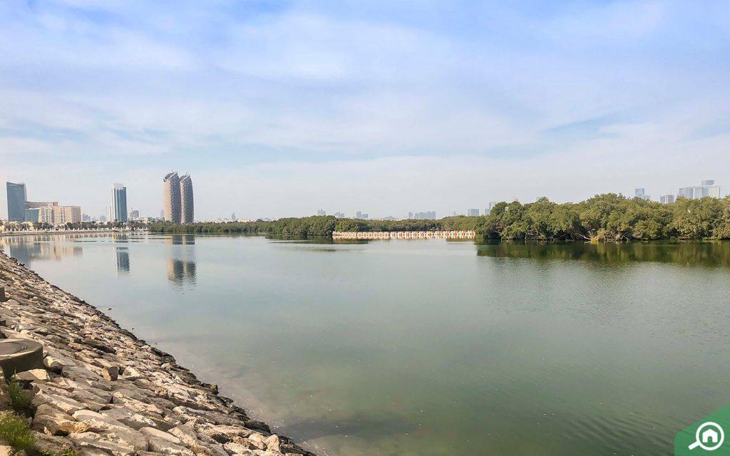 mangrove national park near al muroor road abu dhabi