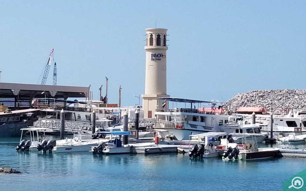 dubai fishing harbour in umm suqeim 2