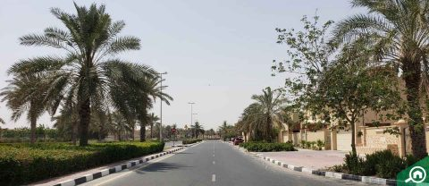 Oud Al Muteena 3
