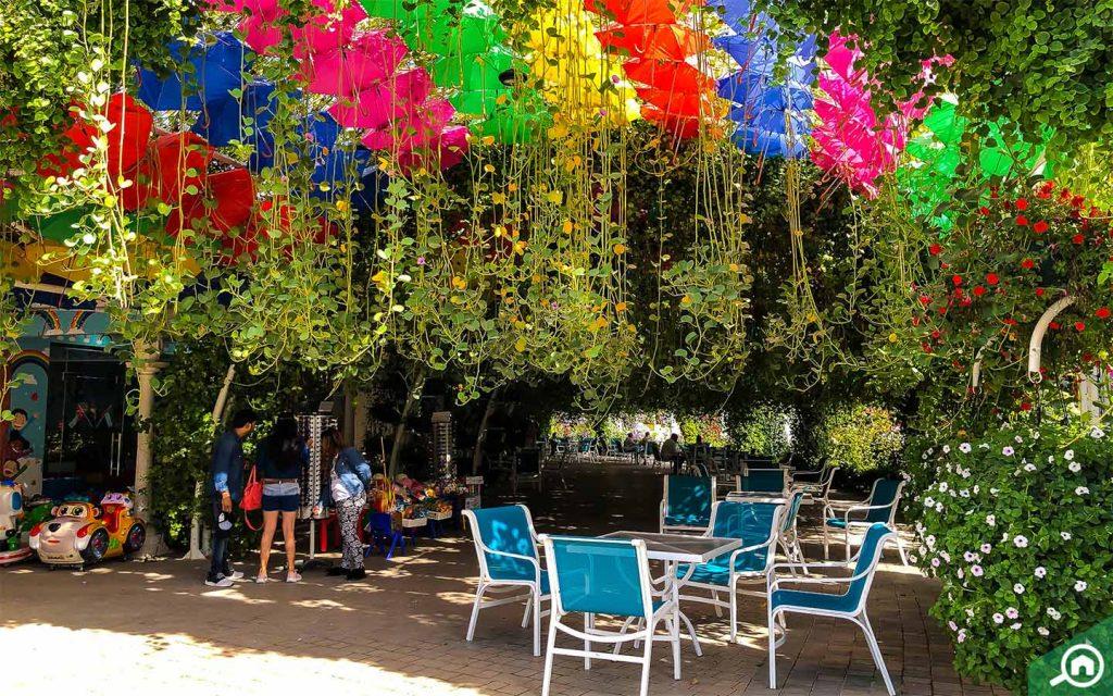 dubai miracle garden near district 4c