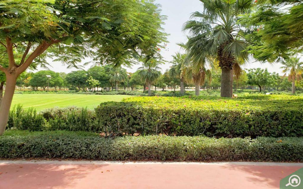 park near oud al muteena