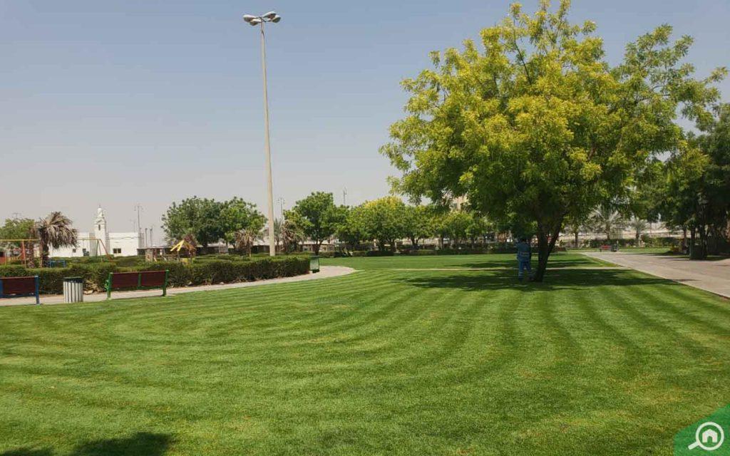 حديقة عامة في قرية الأميرة